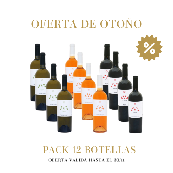 Pack oferta 12 botellas